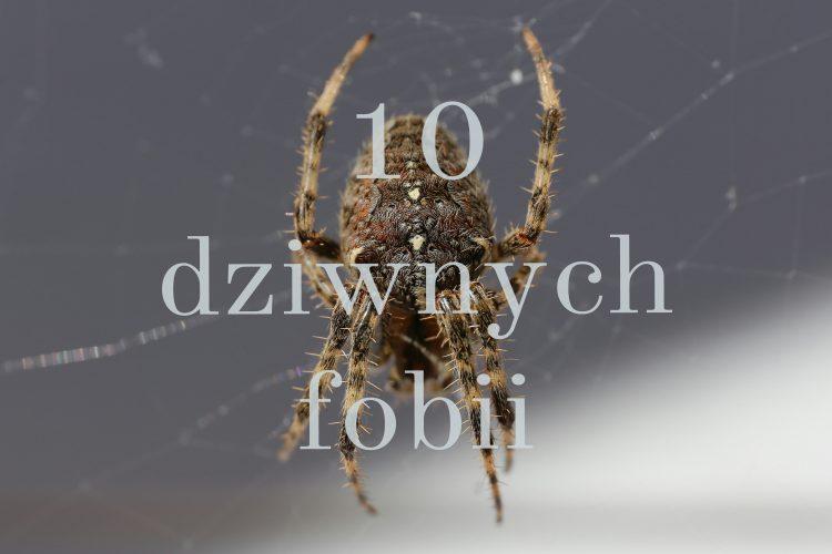 10_dziwnych_fobii