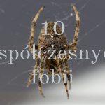 10_wspolczesnych_fobii